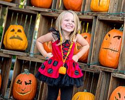 the great pumpkin fest - Halloween Haunt Schedule