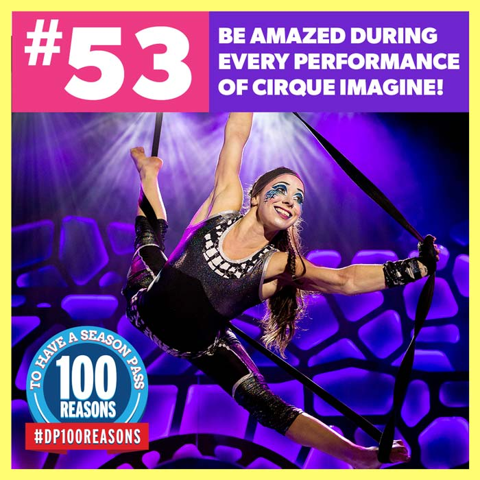 Be amazed during every performance of Cirque Imagine!