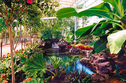 Gardens Images gilroy gardens family theme park